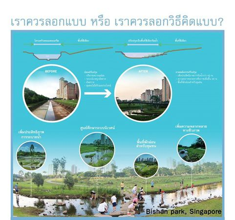 Friends of the River_ภาพที่8