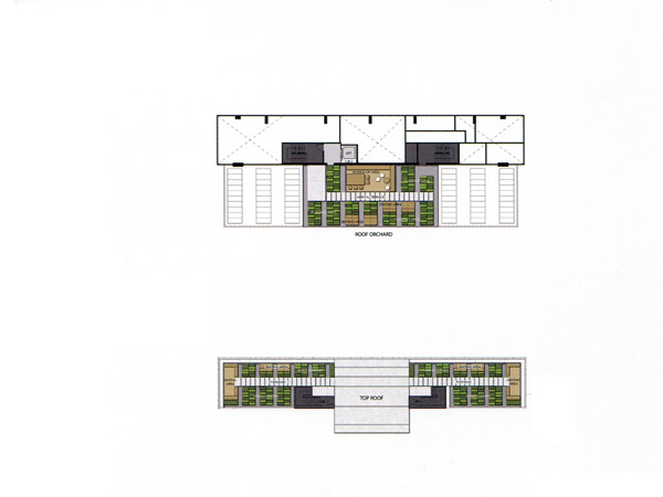 Floor Plan THE ESSE SUKHUMVIT 36 ชั้นที่ 43 และ Roof Top