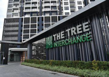 The-Tree-Interchange-Feature