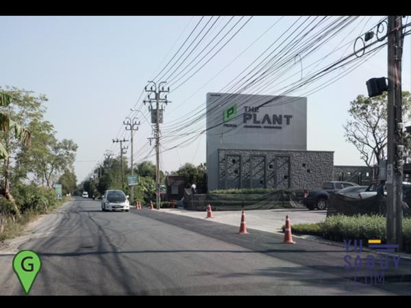 The Plant ชัยพฤกษ์-วงแหวน