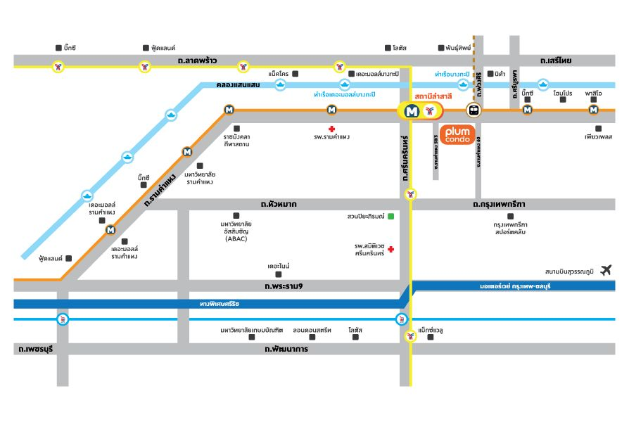 Map Plum 60
